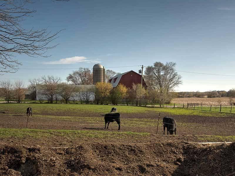 Hertel Family Farm